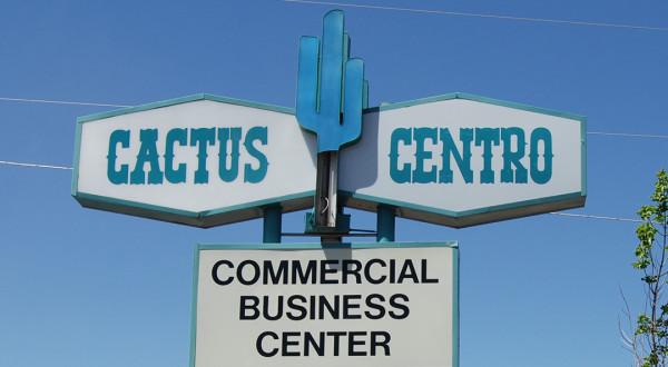 cactus-centro